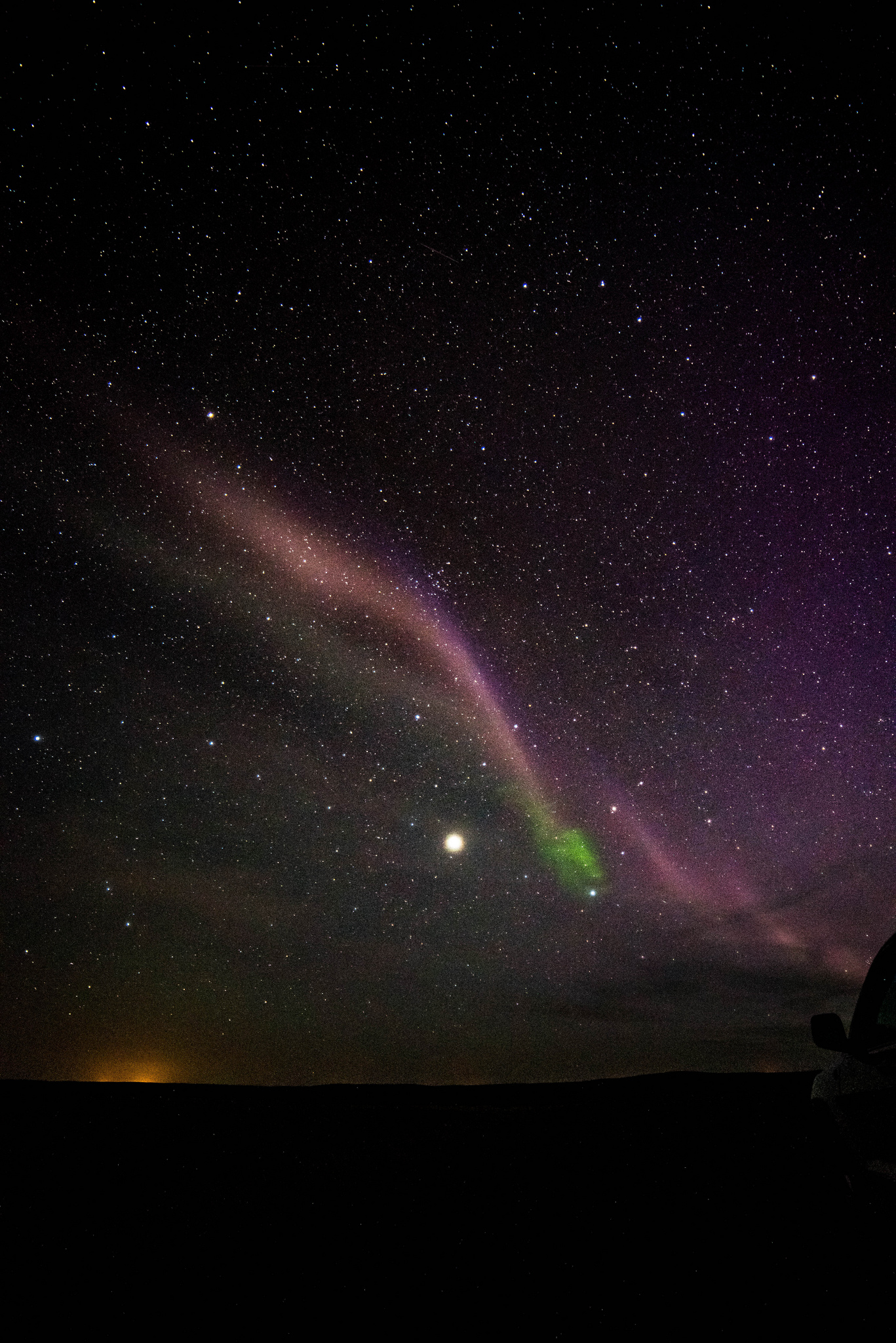 STEVE (Strong Thermal Emission Velocity Enhancement) is seen as a thin purple ribbon of light.    Credit: ©Megan Hoffman