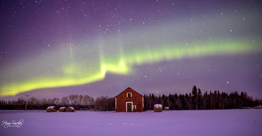 A small red barn sits in the snow underneath the aurora.